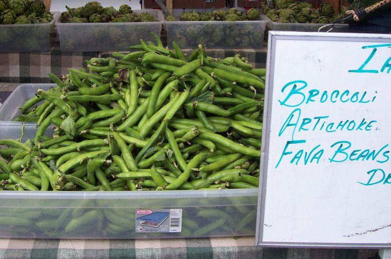 Fava Beans